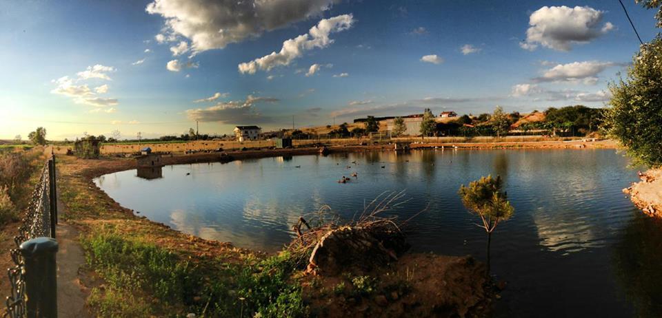 laguna patos villar de mazarife