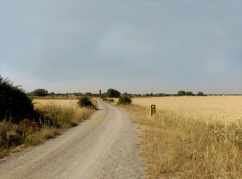 Camino de entrada a Chozas de Abajo
