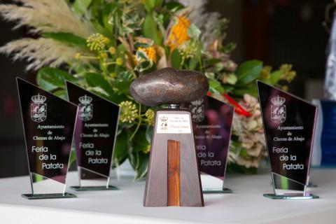Trofeo de la patata de bronce