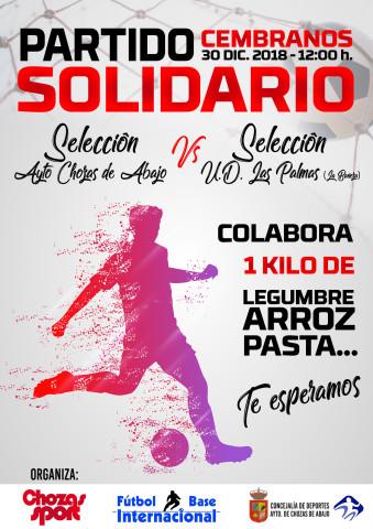 cartel partido solidario